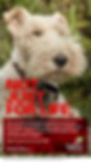 L&G Hercules digital poster Dog 72p.jpg