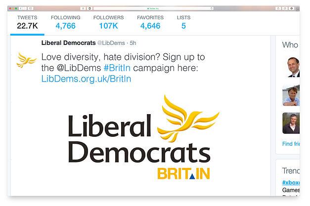 Lib Dems EU Referendum brand dev Twitter