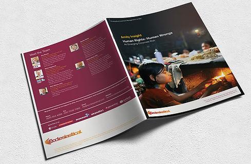 Amity Human Rights cover 72p.jpg