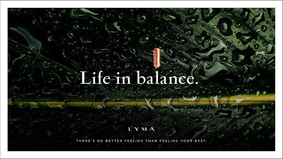 LYMA campaign visual 3 72p.jpg