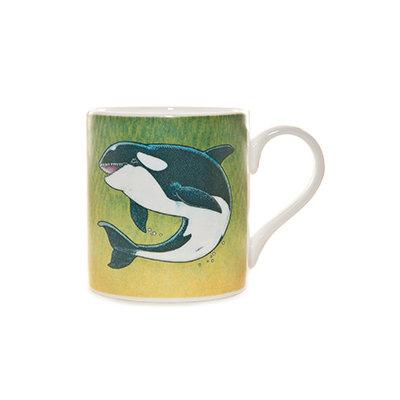 Orca colour