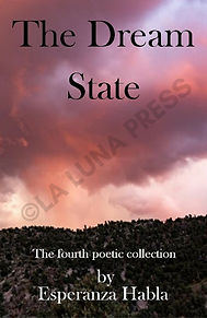 the dream state cover image with copyrig