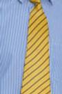Poddar International School Tie