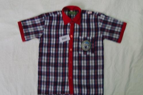 Central School Shirt Half