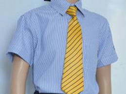 Poddar International School Shirt Regular