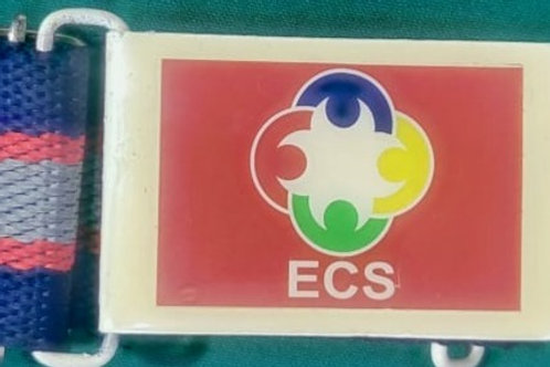 ECS Bagless School Belt