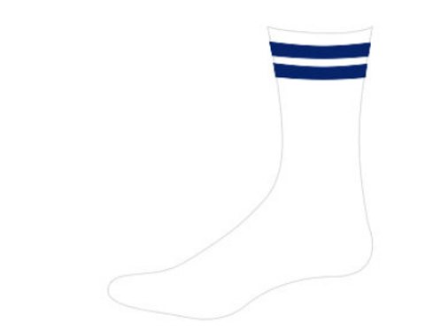 Poddar International School Socks