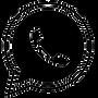 FAVPNG_whatsapp-logo-icon_A55u7D57-remov