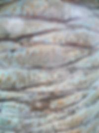 Pattern_natural_6.jpg