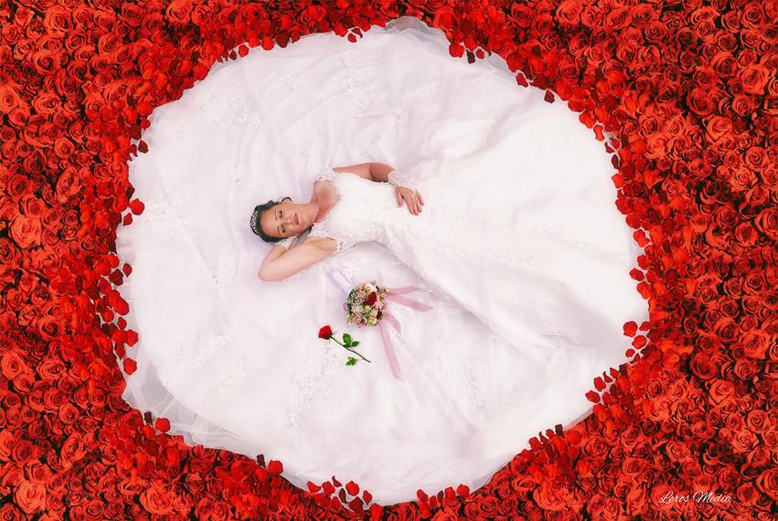 Braut auf dem Rosenfeld