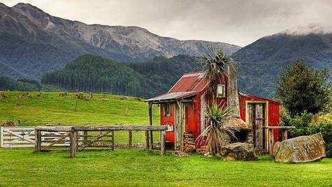 NZFilm2.jpg