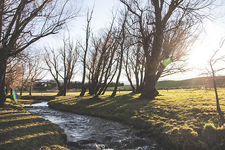 Lombardy Cottage stream Central Otago