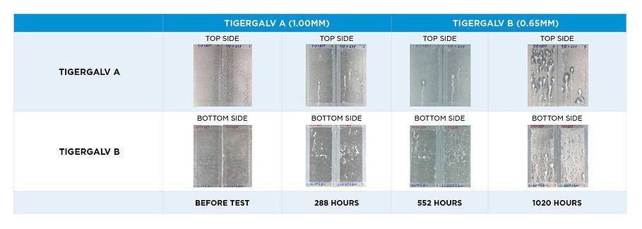 TIG 004755 Tiger Steel Graphs NEW3.jpg