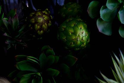 Faux Flowers Wanaka