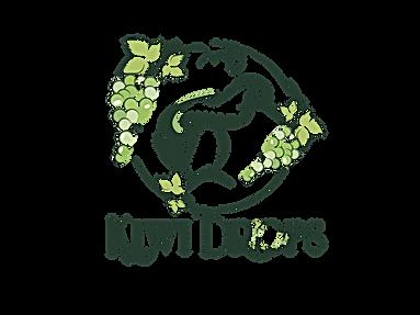 KIWIDROPS FULL LOGO FINAL.png