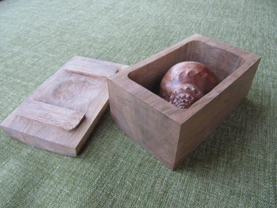 Helen's Shell Box