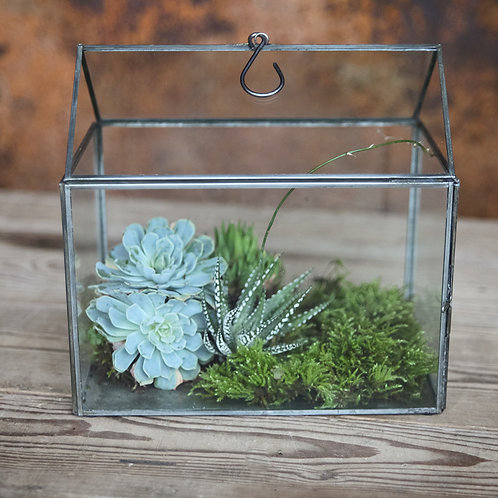 Micro Greenhouse Planter