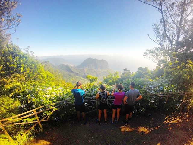 A shade and a view__RUNNiNG TOURS _ MADEiRA ISLAND__WWW.GOTRAILMADEIRA