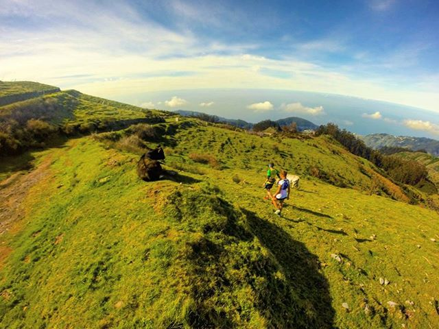 RUNNING TOURS IN MADEIRA ISLAND