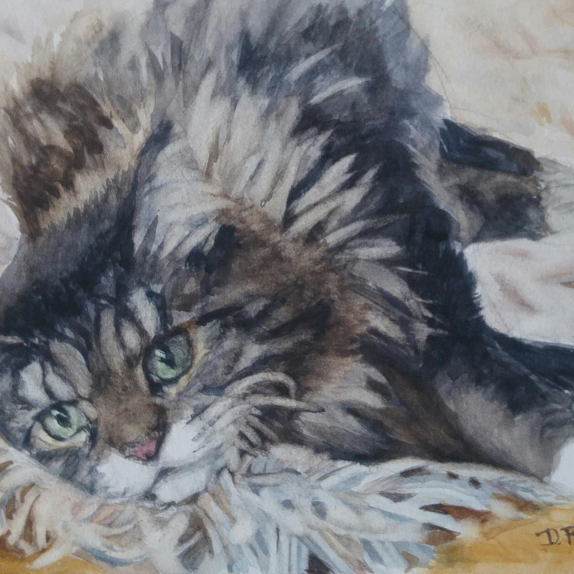 "Bucky, watercolor 12"" x 9"""