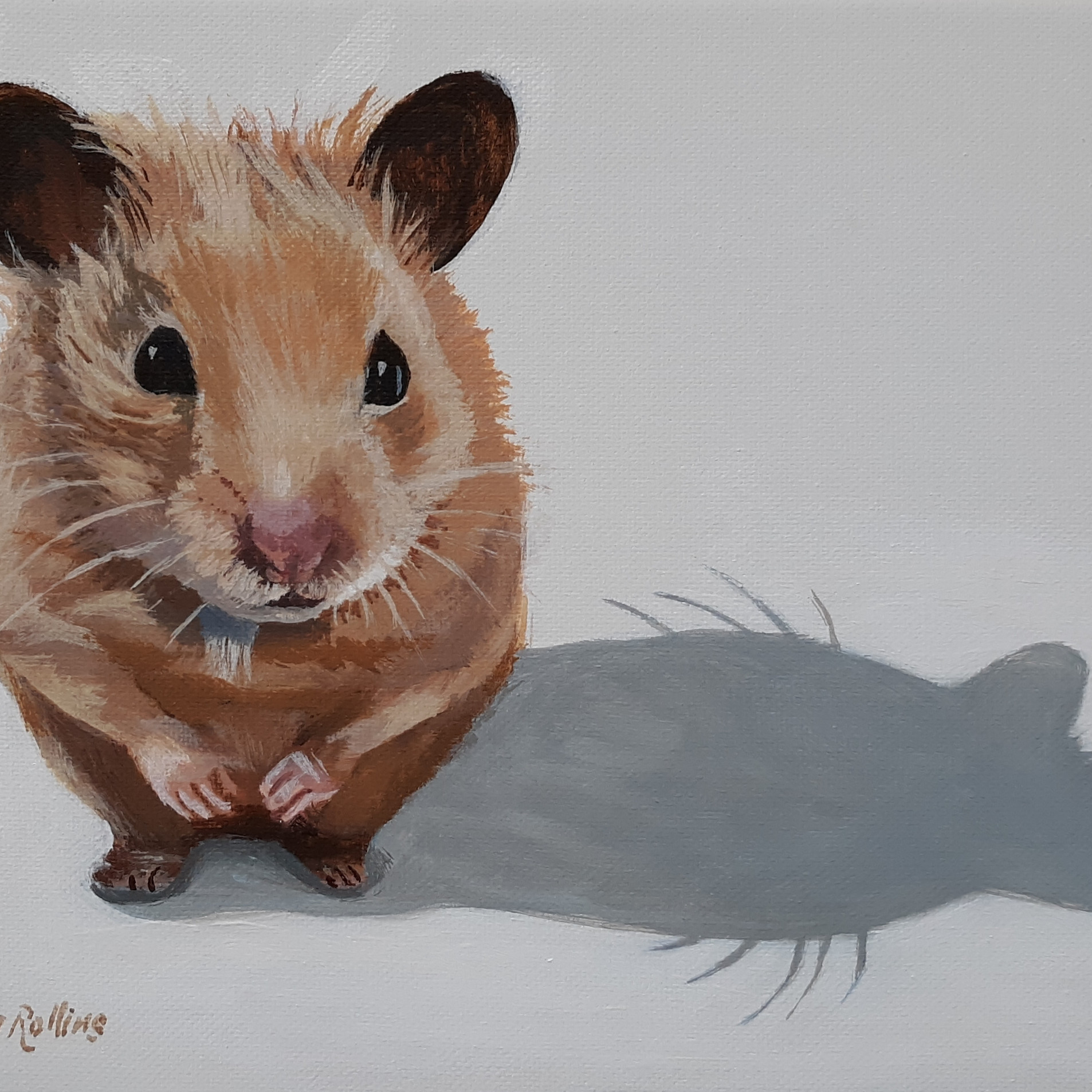"Honey the Hamster 10"" x 8"" acrylic on canvas"