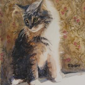 "Baby Bucky, watercolor 9"" x 12"""