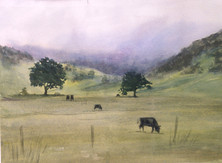 """Field with Cows, watercolor 20"""" x 16"""""""