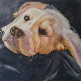 "Puppy Love, watercolor 8"" x 8"""