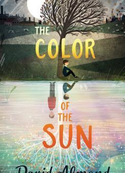 Review: The Color of the Sun - David Almond