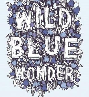 Review: Wild Blue Wonder - Carlie Sorosiak