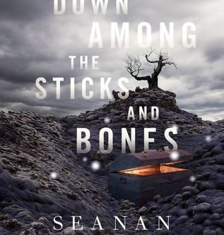 Review: Down Among the Sticks and Bones - Seanan McGuire