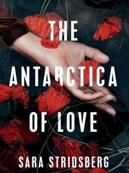 Review: The Antarctica of Love - Sara Stridsberg