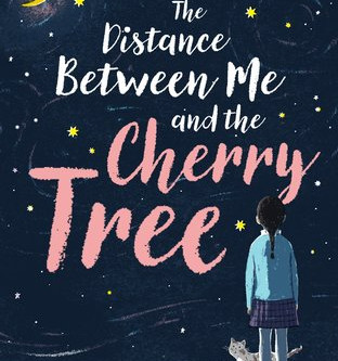 Review: The Distance Between Me and the Cherry Tree - Paola Peretti
