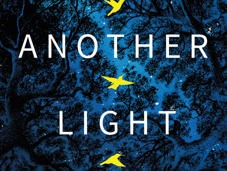 Review: In Another Light - A.J. Banner