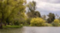 Reservoir1.jpg