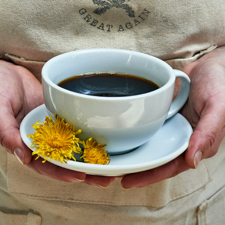 กาแฟที่ไม่ใช่กาแฟ แต่คือวัชพืช