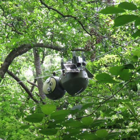 หุ่นยนต์สล็อธ ดูแลพืชสวนไร่นา