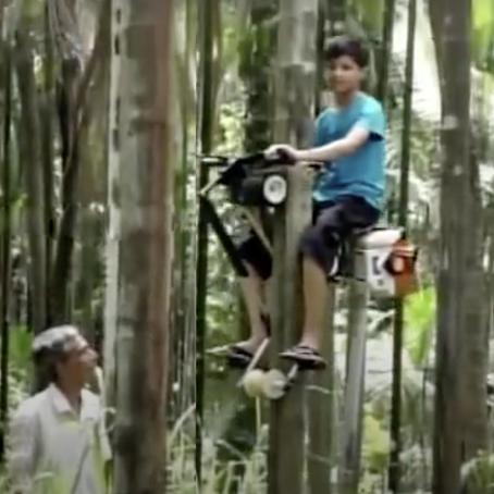 รถปีนต้นไม้จากอินเดีย
