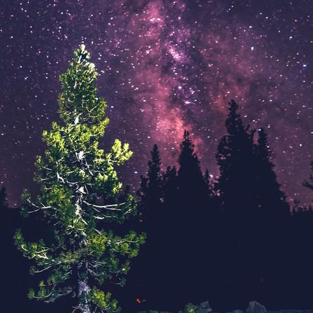 ประกอบดาวเทียมจากไม้ เทคโนโลยีอวกาศสะอาด