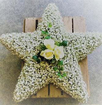 Star of Gypsophila