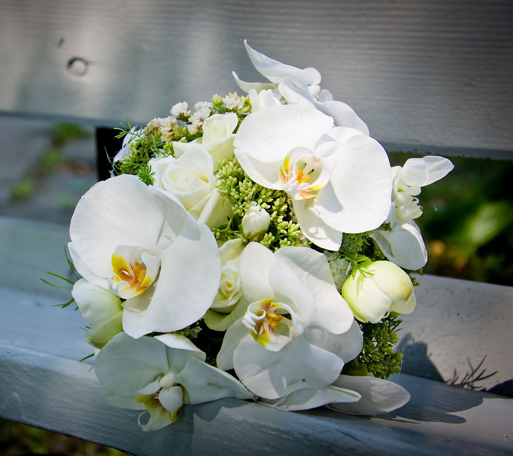 white orchid wedding posy