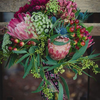 Proteas, Ammi & Thistles