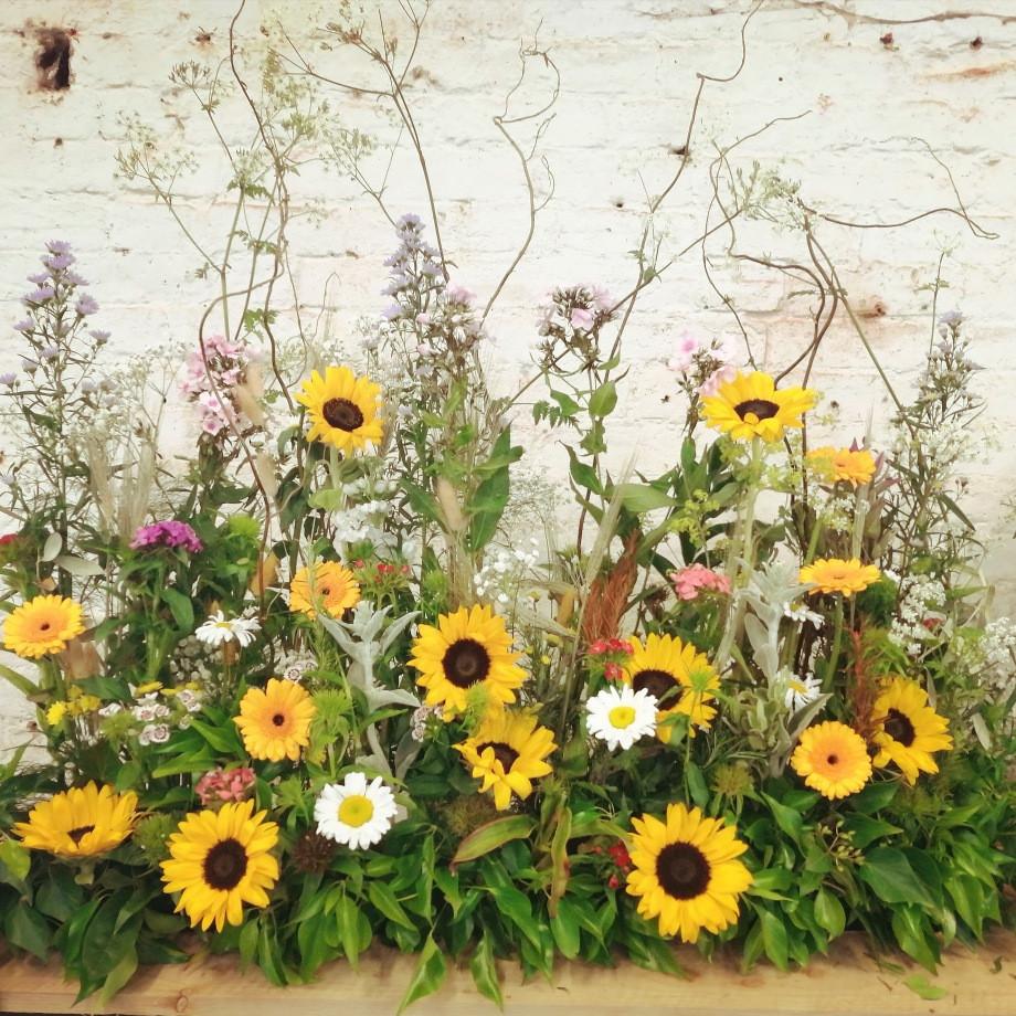 Sunflower meadow parallel arrangement