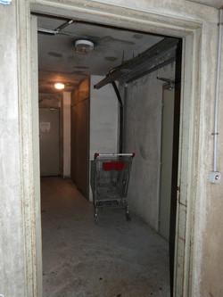 P1110669 vie souterraine