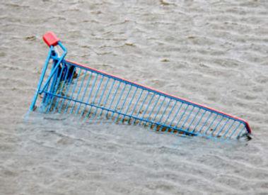 caddie dans l'eau 2.jpg