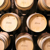 stina-winery-bol-barrels.jpg