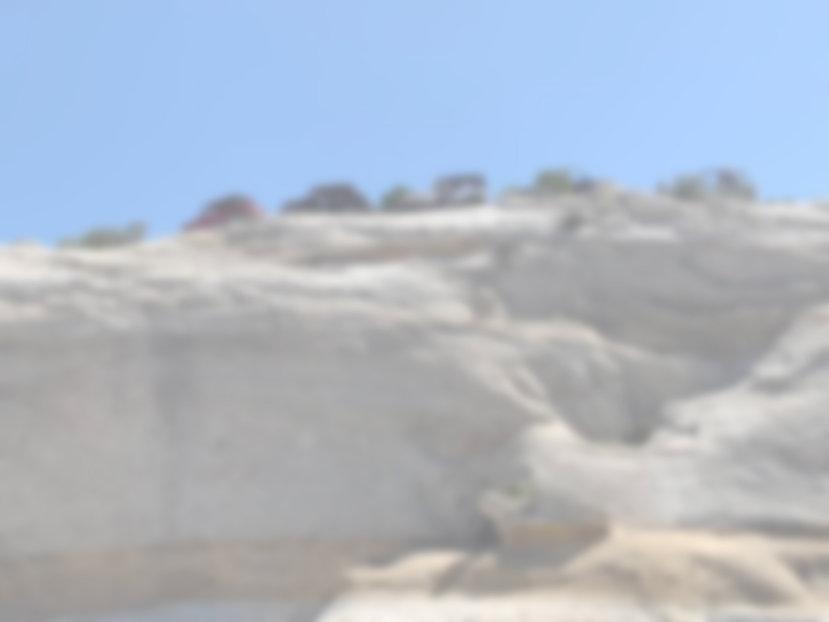 IMG_8136-blur.jpg