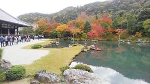 텐류지(天龍寺)의 소겐치(曹源池)정원의 단풍