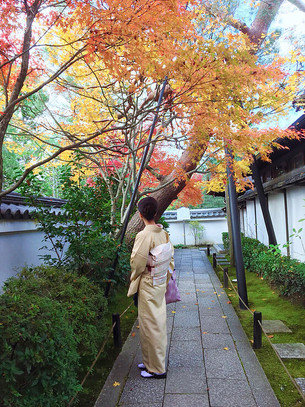 타이조우인(退蔵院)의 단풍