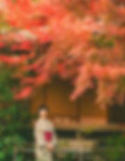 교토사진,교토스냅사진,교토스냅촬영_edited.jpg